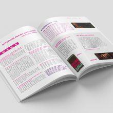 """Broschüre Gestaltung und Druck """"Cupiditas"""""""